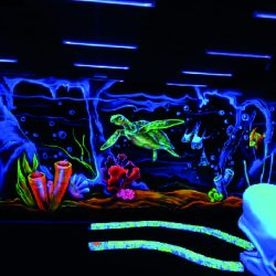 tortue fluo mini golf